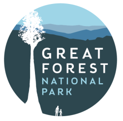 Festival puts Great Forest NP front and centre