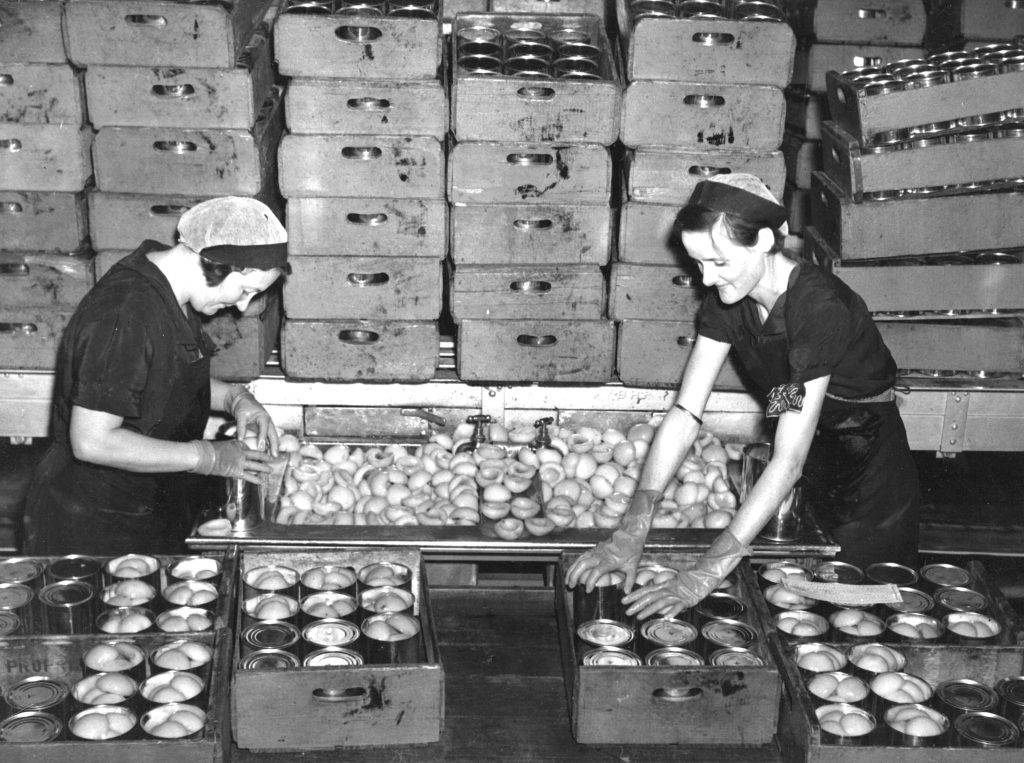 Canning peaches at S.P.C. Shepp, 1920-1950, Rural Water Corp collection, rwp-33140, SLV